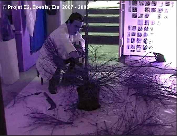 Dimitri Dimitriadès. Projet E2 – η. (Êta). L'arbre ressuscité. 2007. Vidéo. (Project E2 – η. (Eta). The resuscitated tree. 2007. Video.